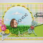Hello spring hedgehog - Deborah