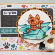 Furry Surprise Cat - Deborah