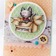 Furry Surprise Cat - Martha