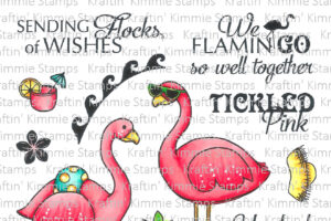 Fancy Flamingos coloured resized